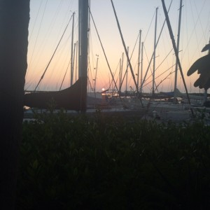 Table views at La Mariana Sailing Club
